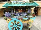 ディズニーシーの花車♪